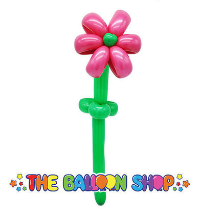 Picture of Flower - Balloon